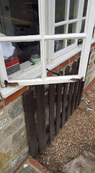 rotten wood removal